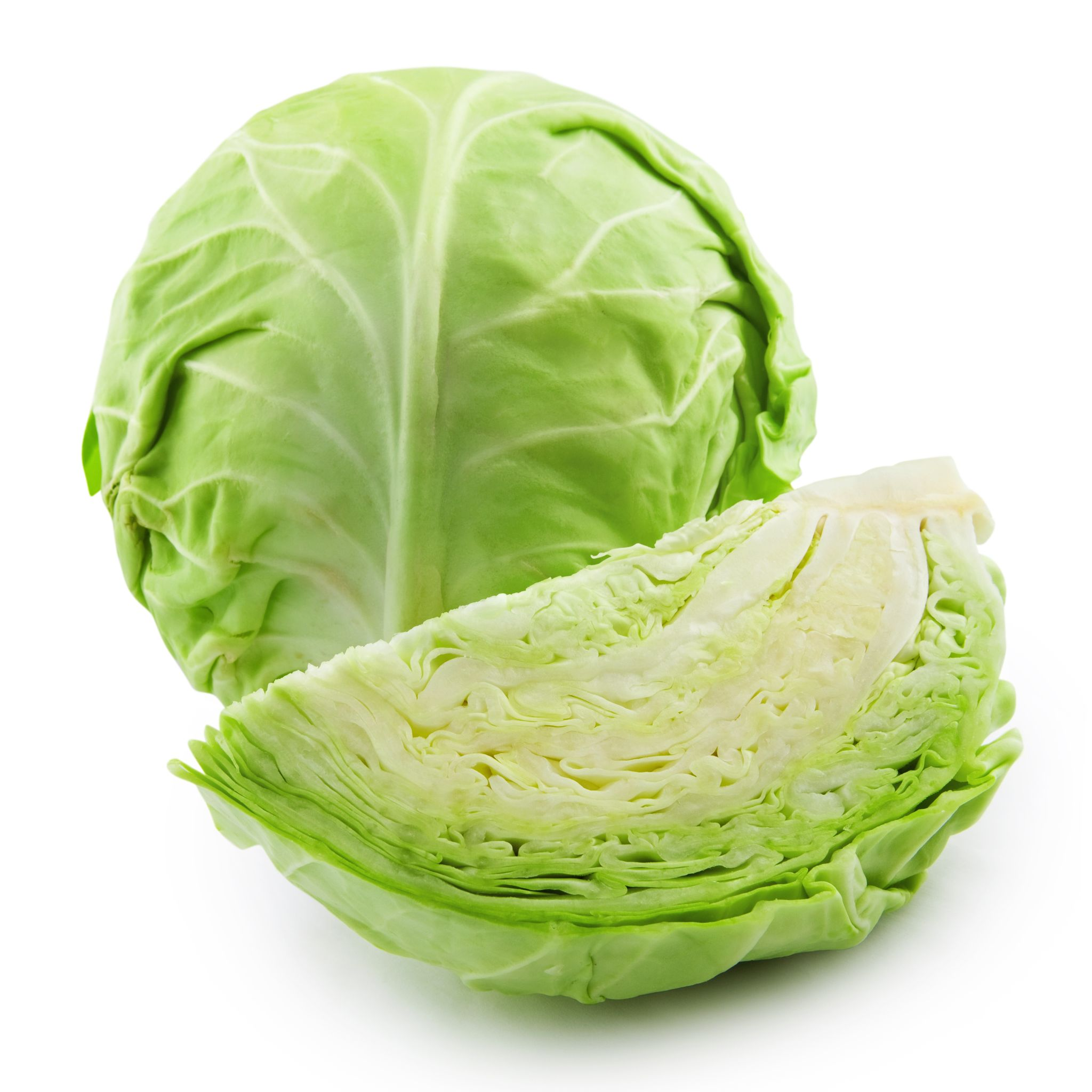 Fresh Cabbage in Section