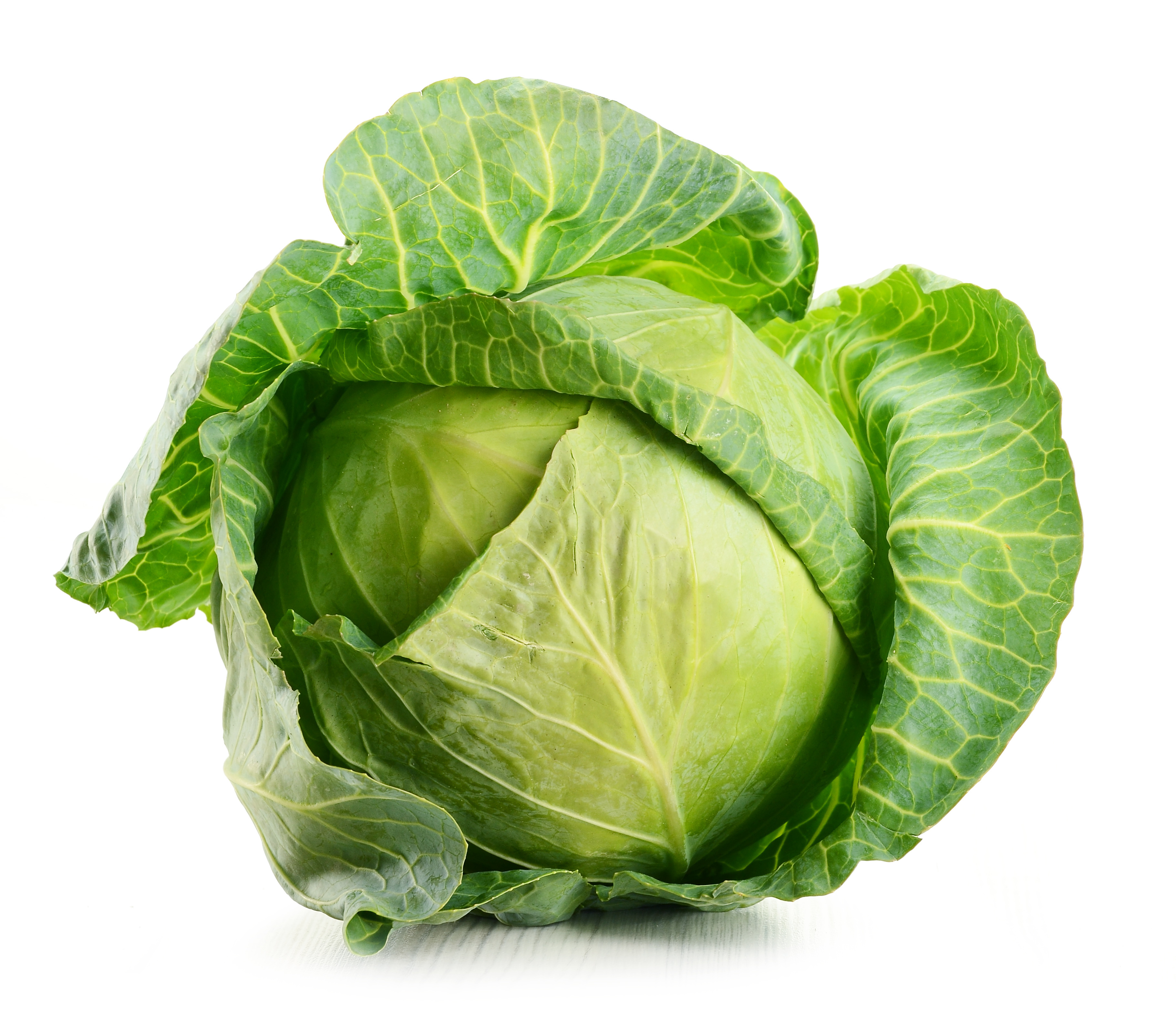 Raw Cabbage Head 243.66 Kb