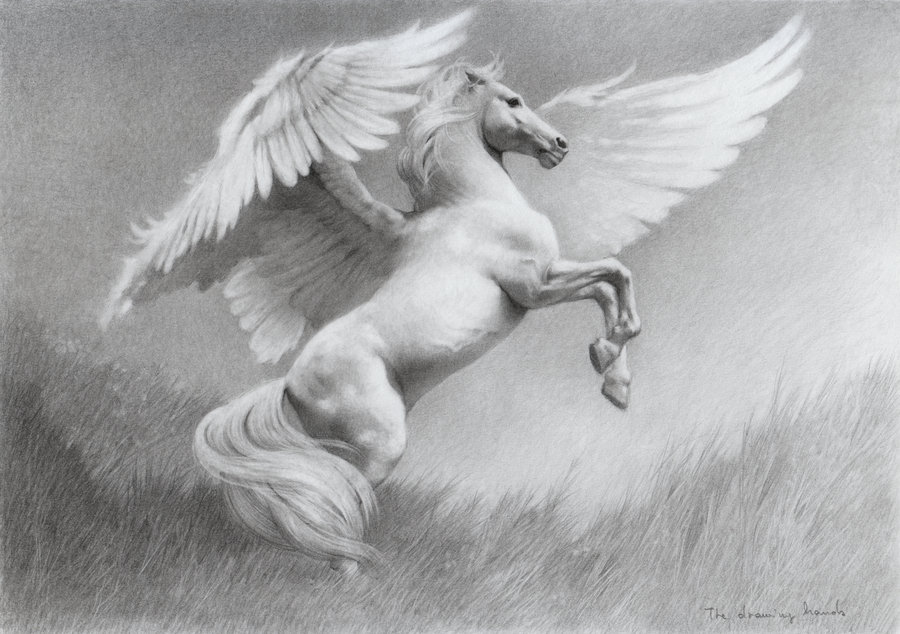Pegasus Drawn with a Pencil