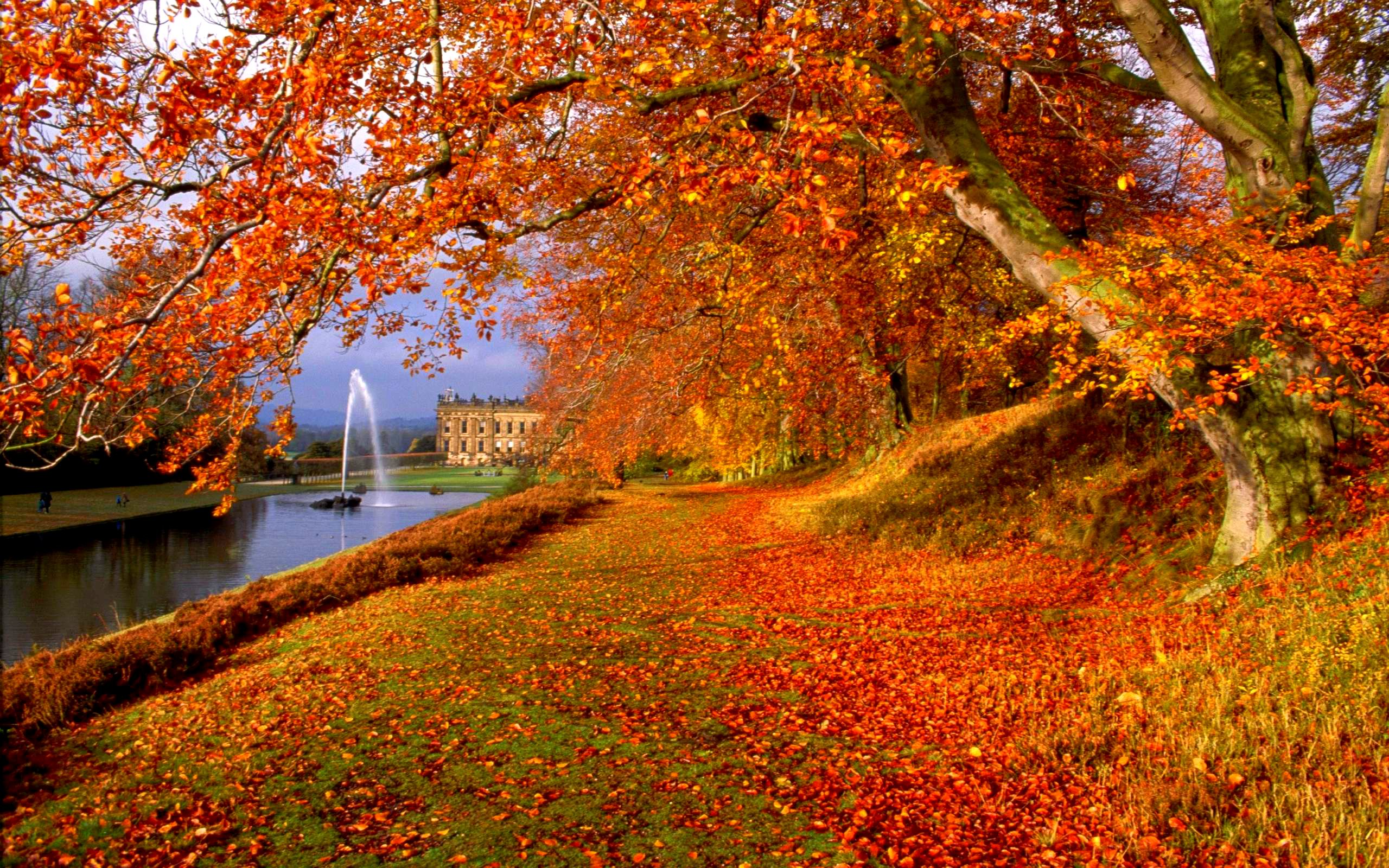 Autumn Leaves Fall In The Country 4245385 2560x1920
