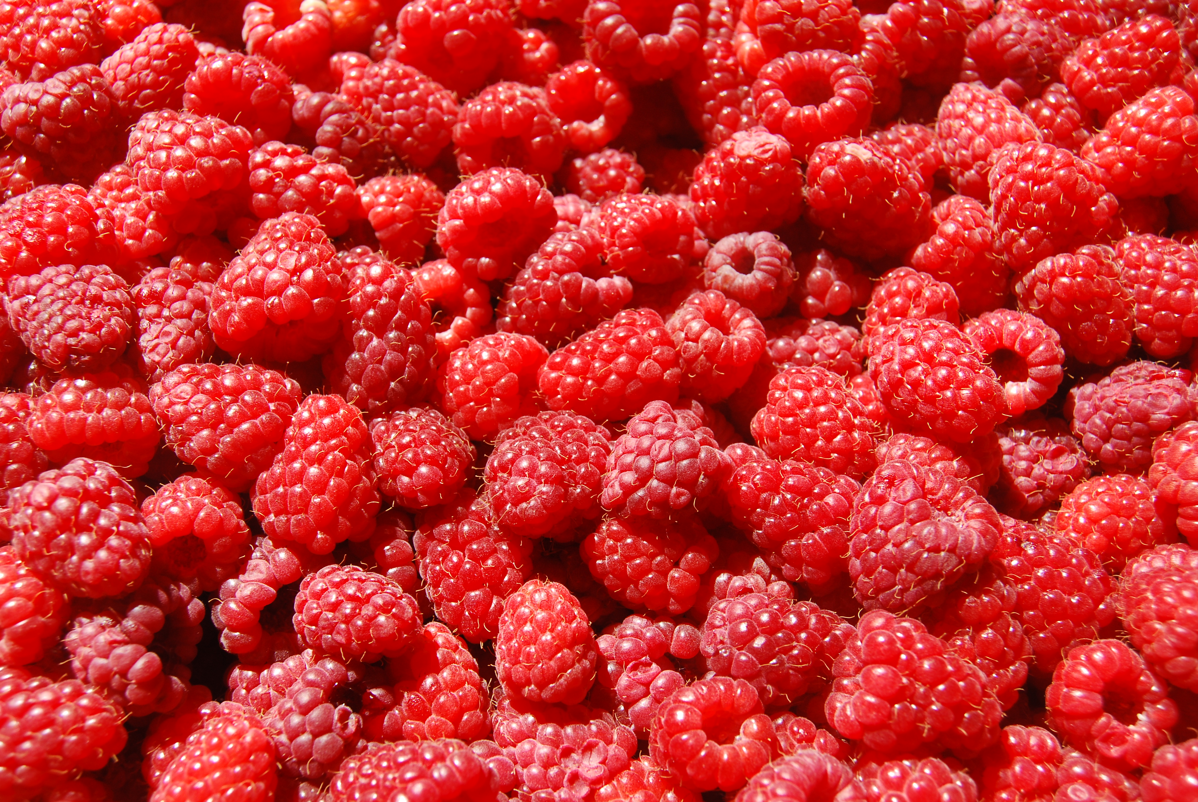 Fresh Raspberries Wallpapers
