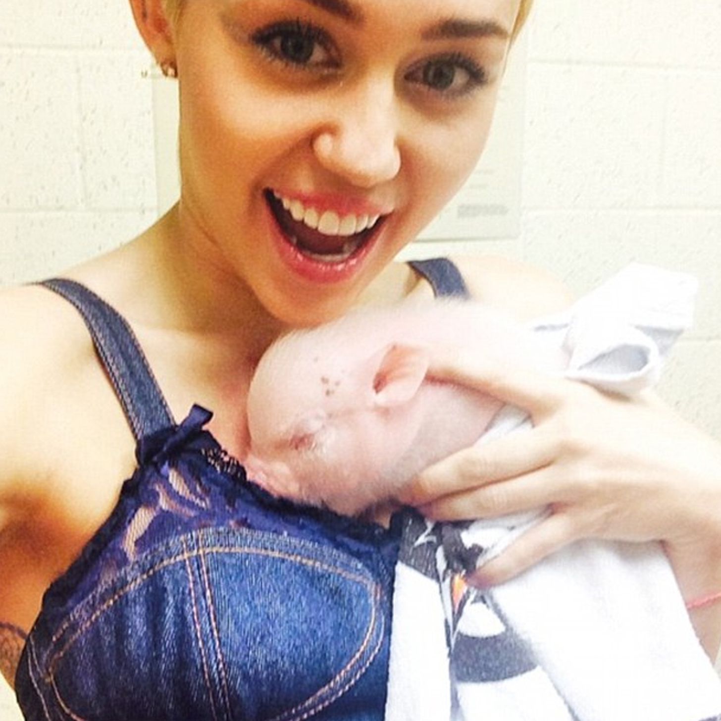 Miley Cyrus with a Small Piglet 1070 Kb