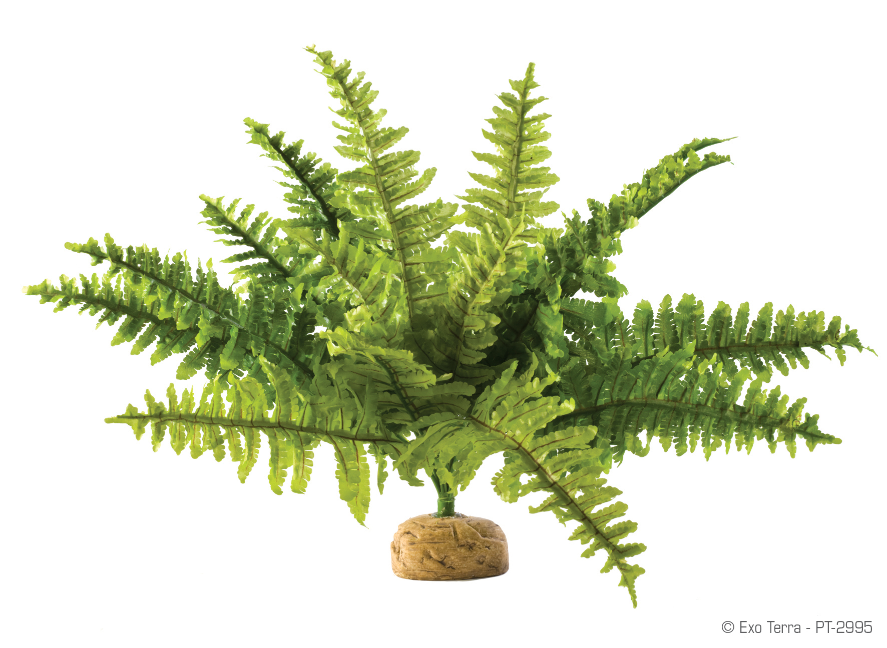 Artificial Fern Decoration  517.98 Kb