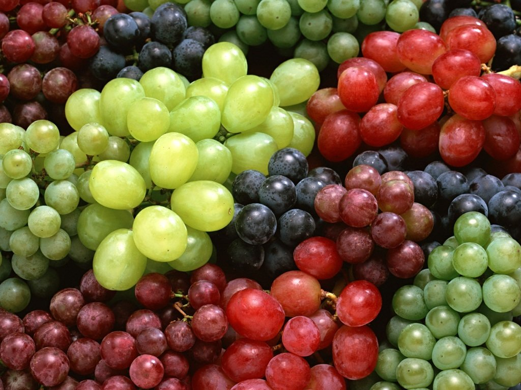 Many of Grapes Varieties 822.8 Kb