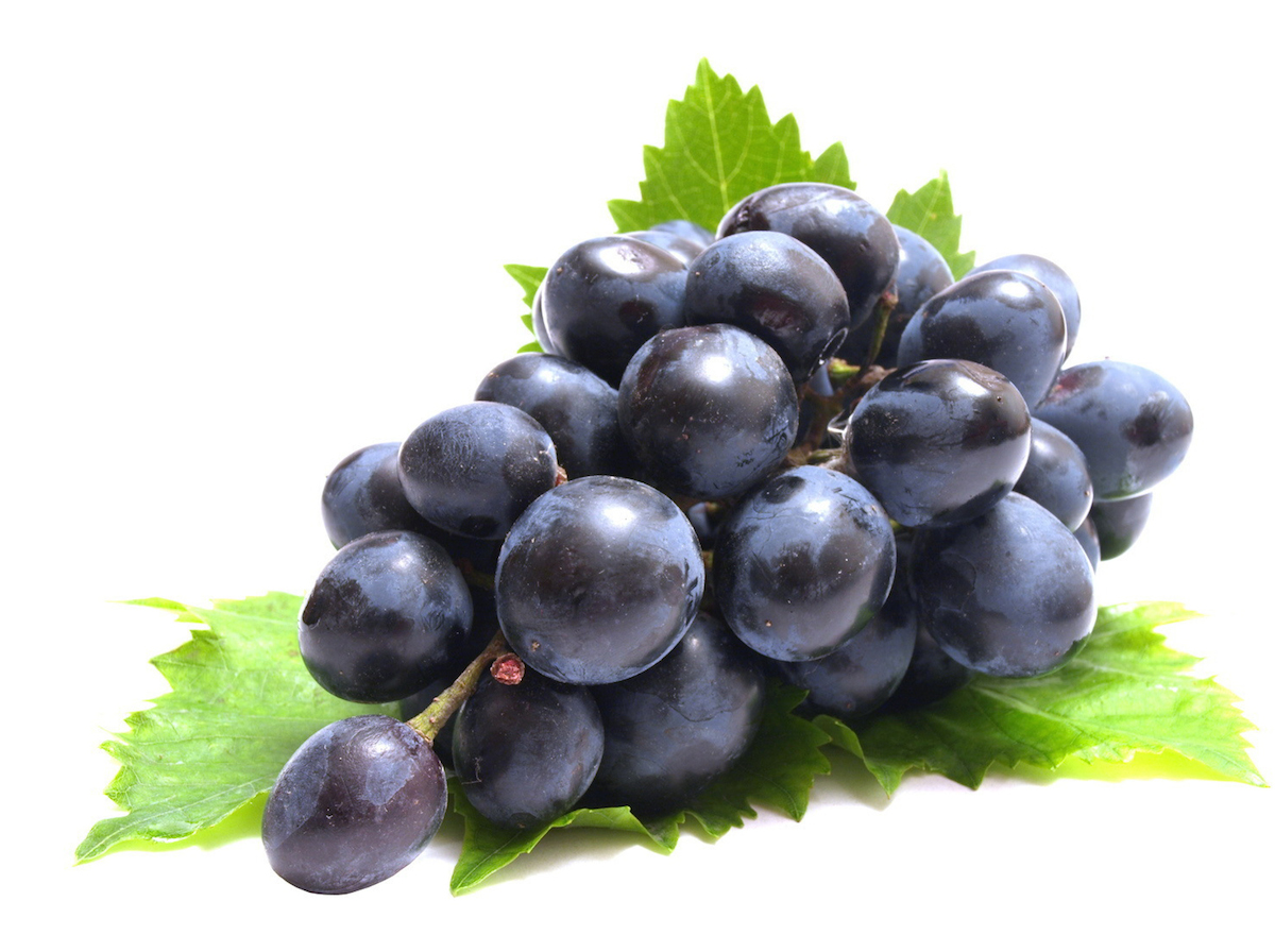 Purple Grapes with Leaves 134.7 Kb