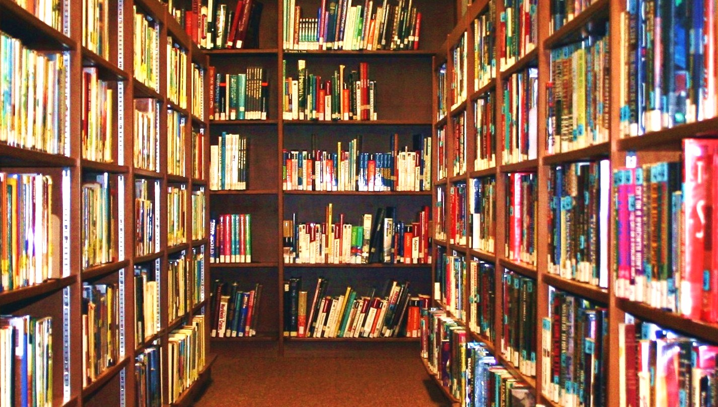Full Shelves with Books in Library 978.85 Kb
