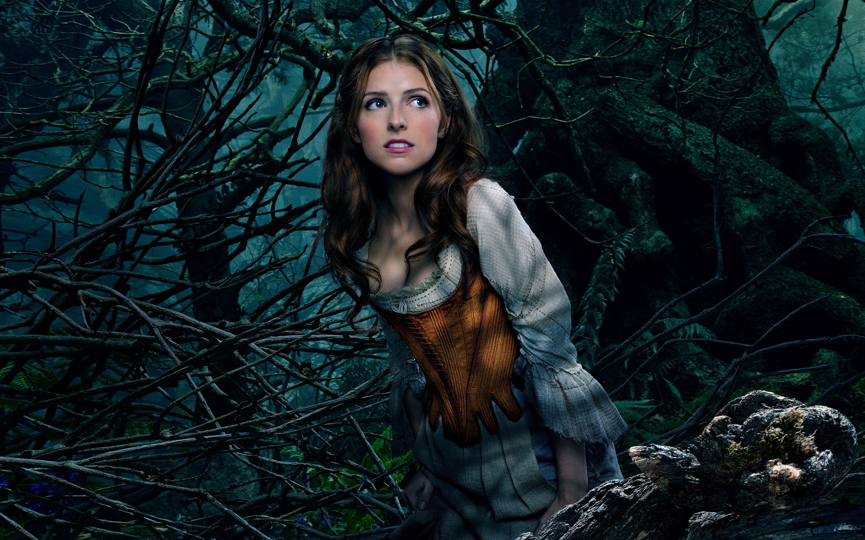Anna Kendrick As Cinderella 4139351 2880x1800 All For