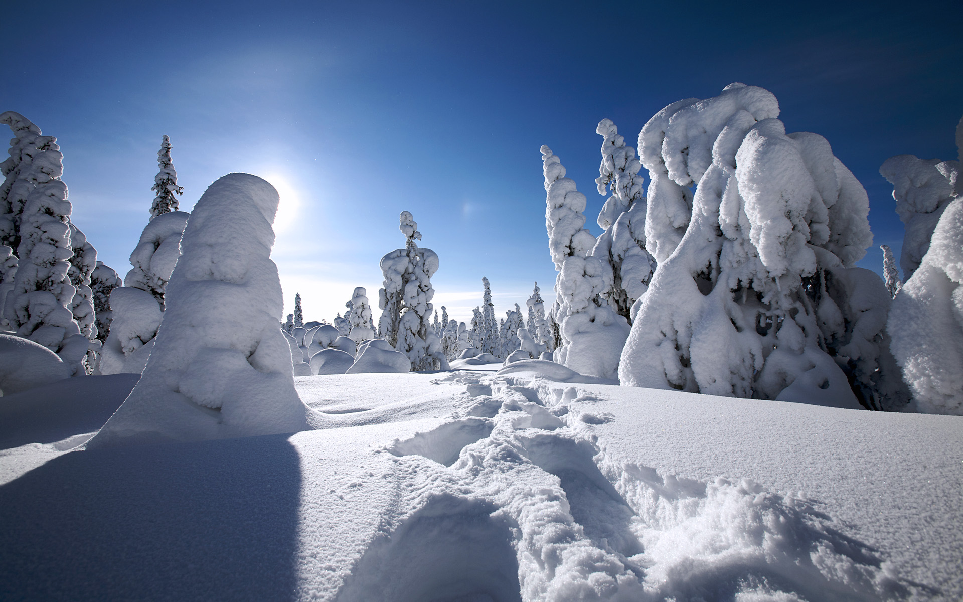Winter in Finland 519.99 Kb