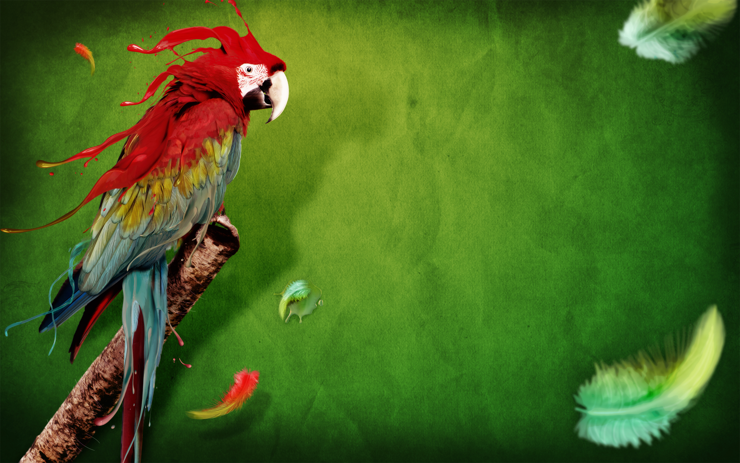 Splash of Parrot 1793.51 Kb