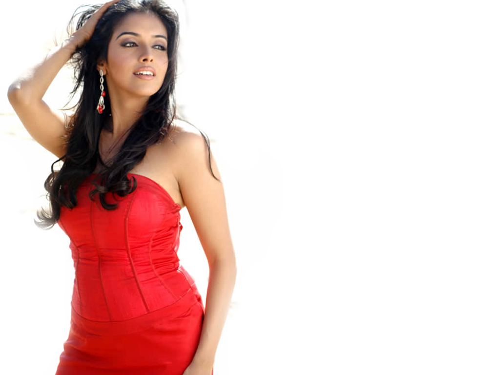 Asin in Ghajini Hindi Movie