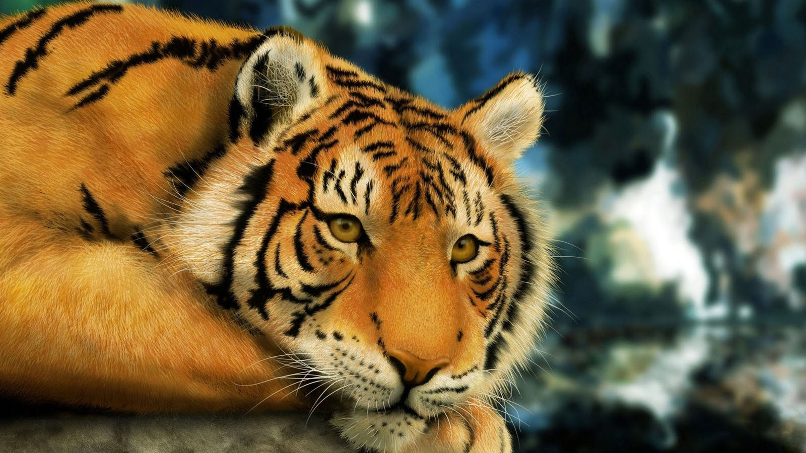 Images of a Tiger Lying Down 192.99 Kb