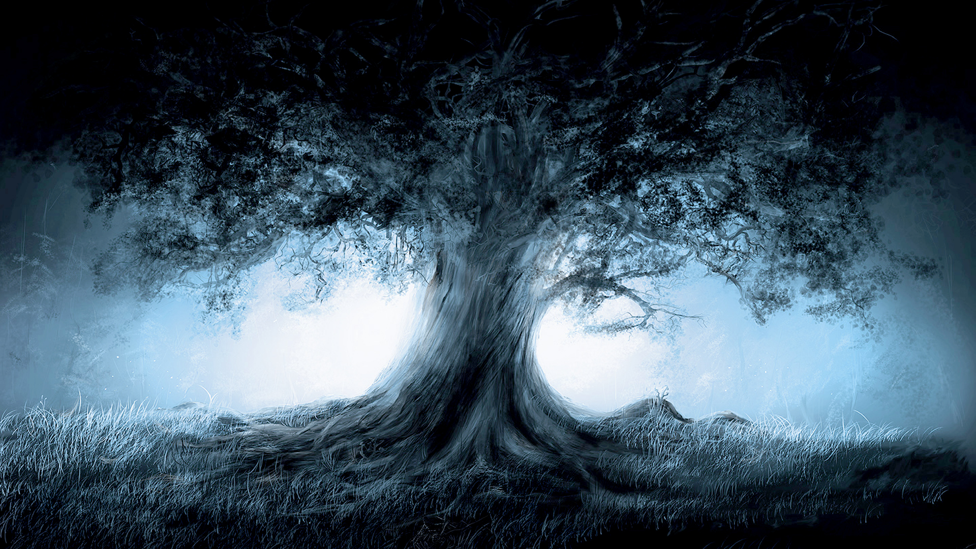 Dark Forest Lonely Tree Wallpapers 242.51 Kb
