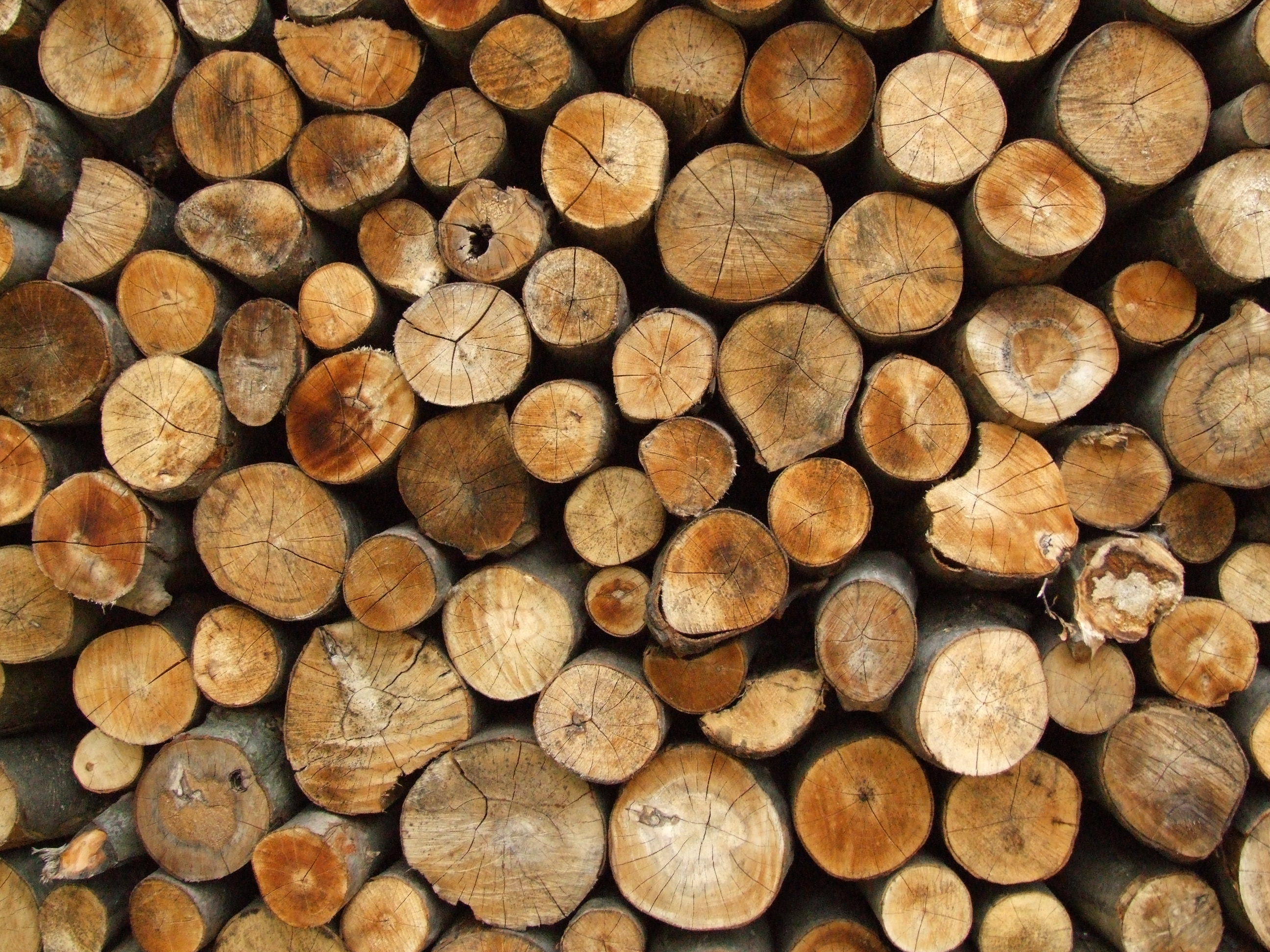 Round Firewood Wallpaper