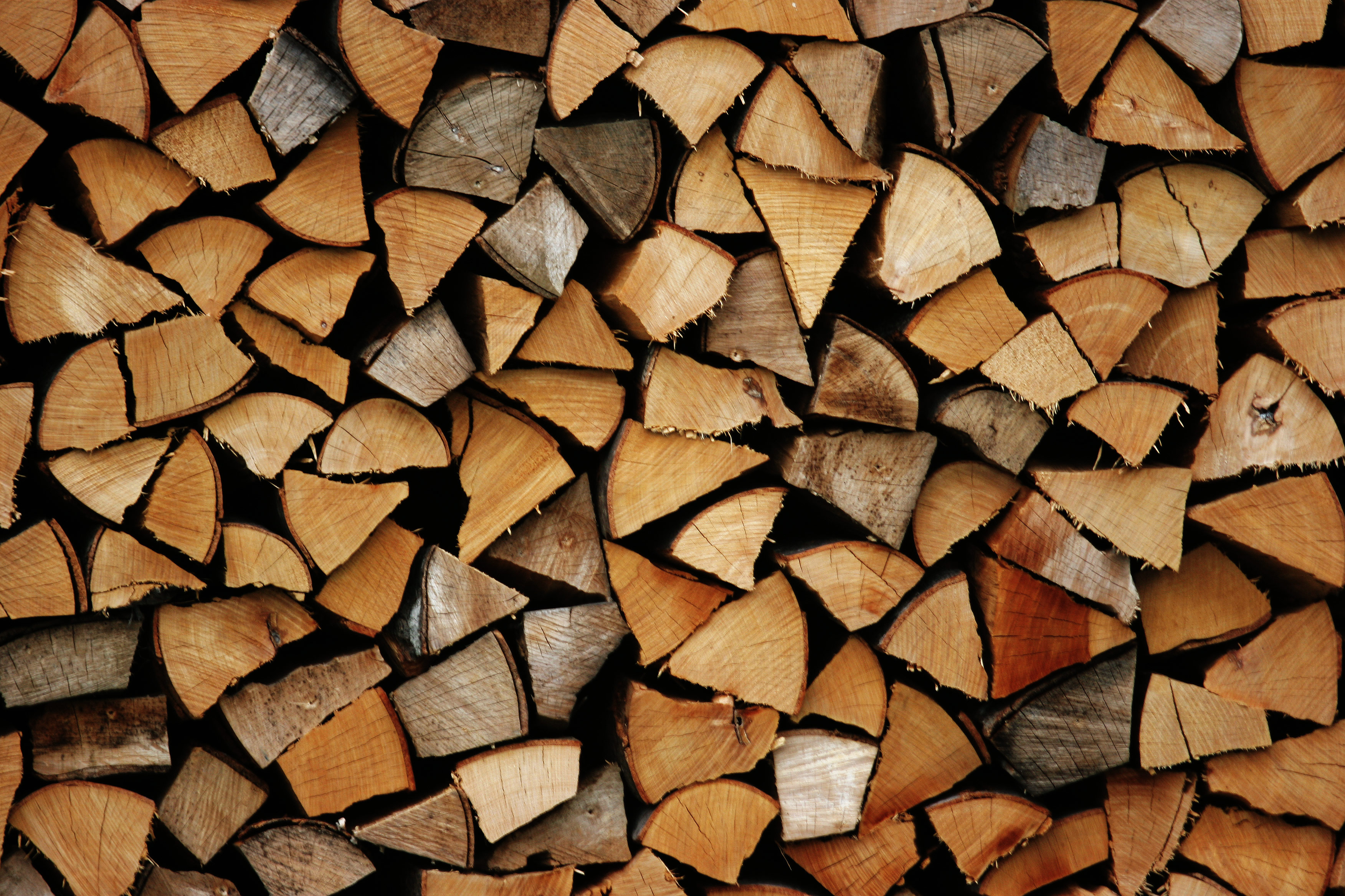 Chopped Firewood Against the Wall