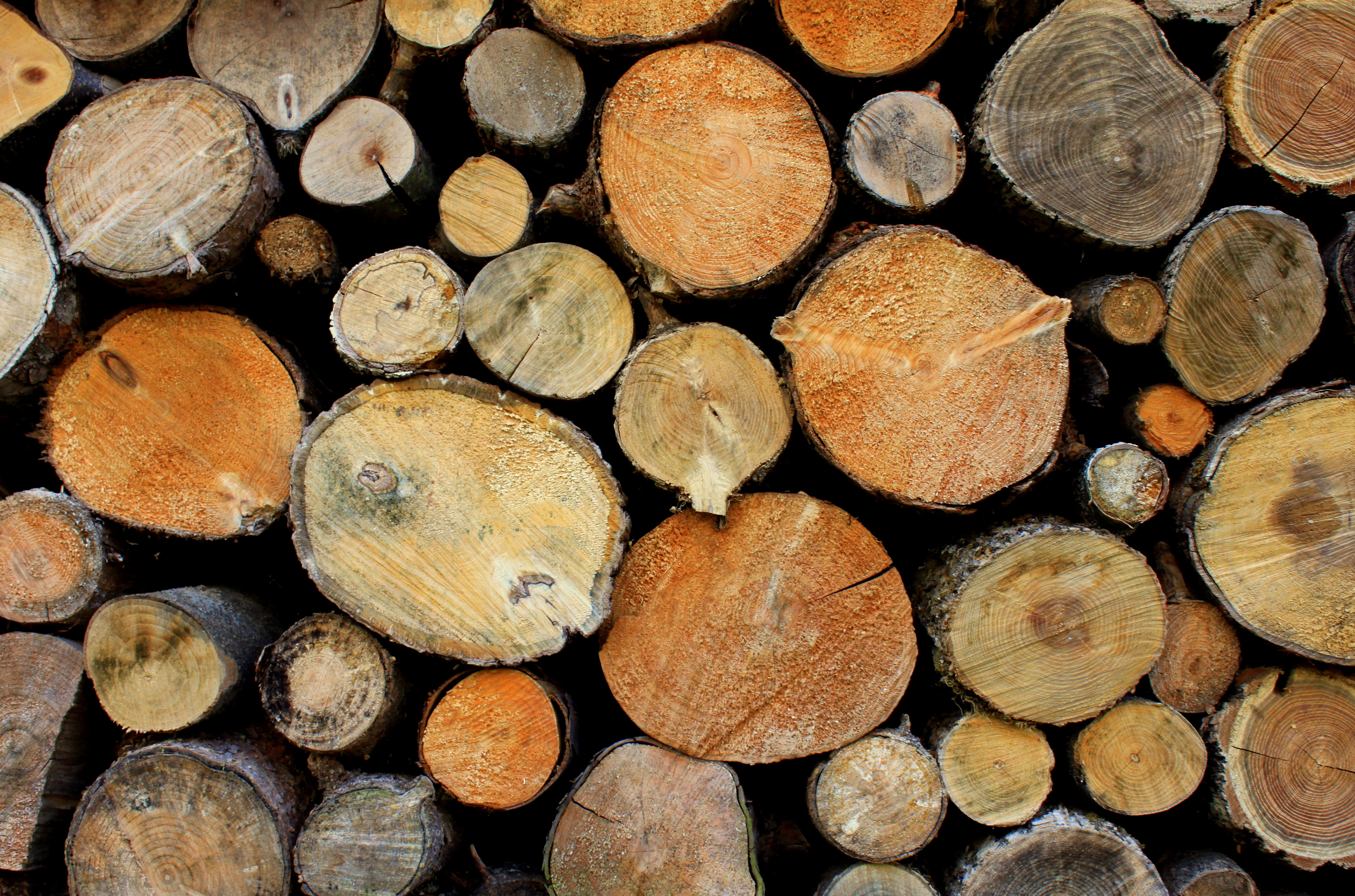 Firewood Heating Material