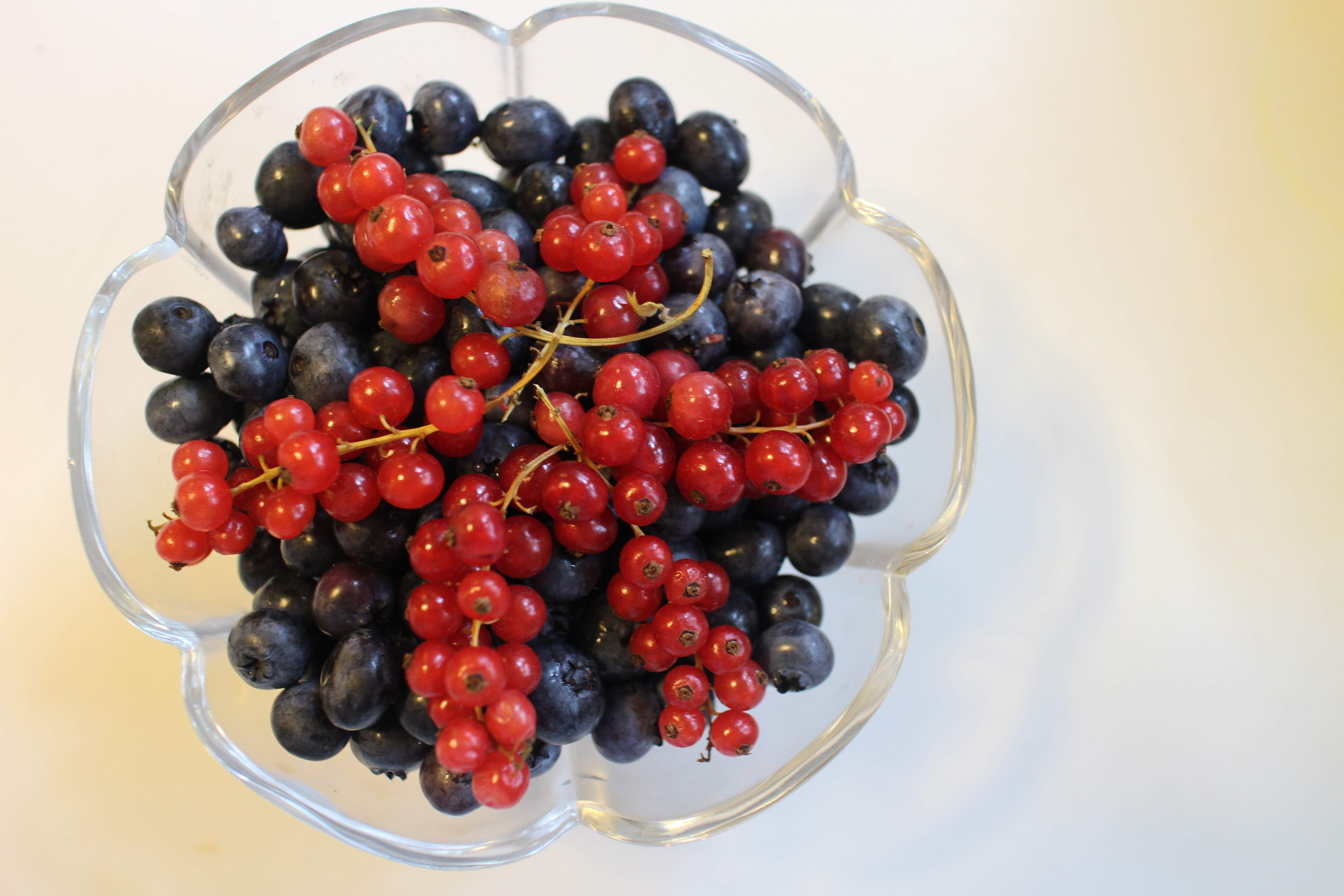 Black and Red Currants 1774.72 Kb
