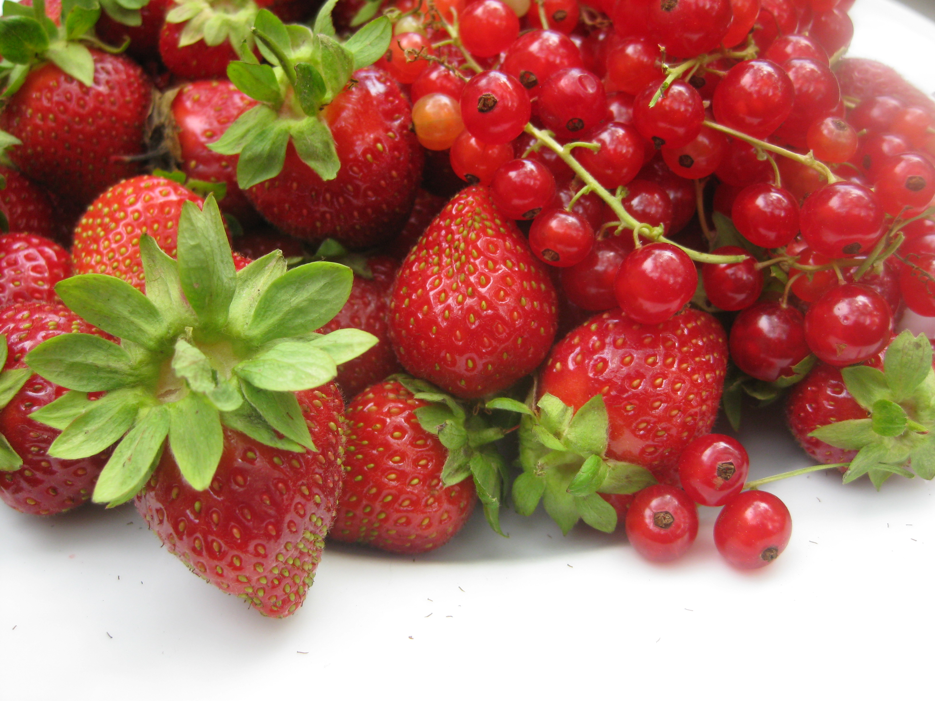 Red Currants and Strawberries on a Plate